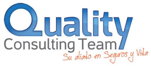 Quality Consulting Team